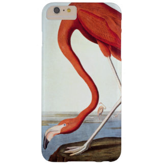 American Flamingo Barely There iPhone 6 Plus Case