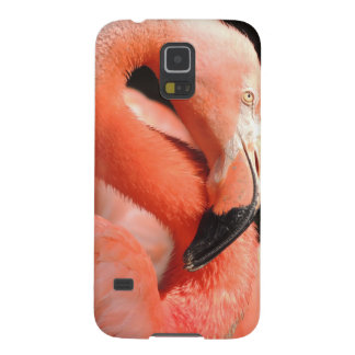 American Flamingo Case For Galaxy S5