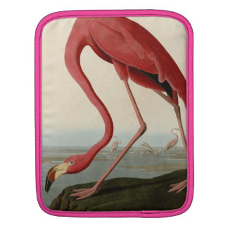 American Flamingo iPad Sleeve