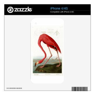 American Flamingo John Audubon Birds of America Decals For iPhone 4S