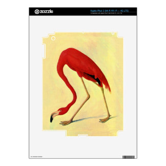 American Flamingo Painting iPad 3 Decals