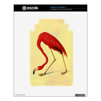 American Flamingo Painting Skins For The Kindle 3