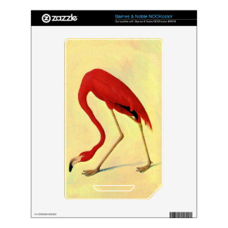 American Flamingo Painting Decal For The NOOK Color