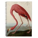 American Flamingo Spiral Note Book