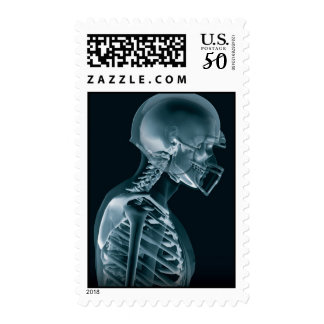 American Football X-Ray stamps