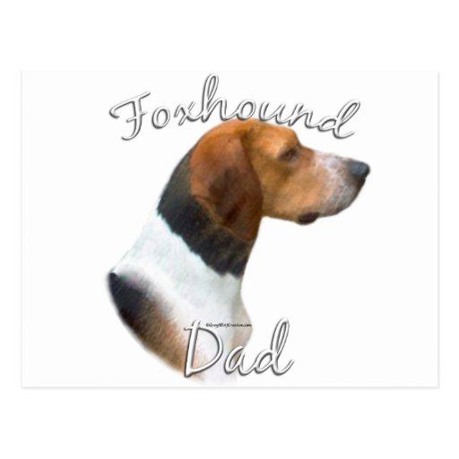American Foxhound Dad 2 Postcard