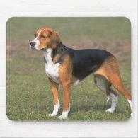 American Foxhound Mousepad