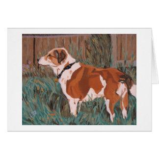 American Foxhound notecard