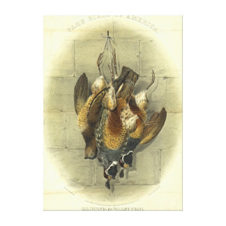 American Game Birds 1861 Canvas Print
