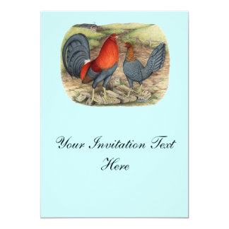 American Game Blue Reds Card