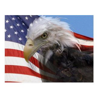 American Glory Postcard