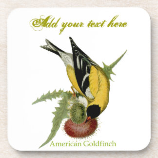 American Goldfinch Beverage Coaster