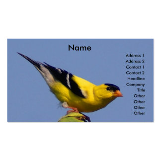 American Goldfinch Business Card