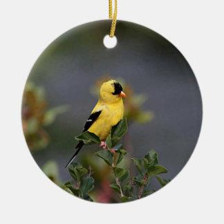 American goldfinch ceramic ornament