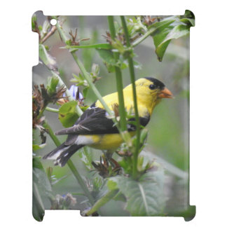 American Goldfinch iPad Cases