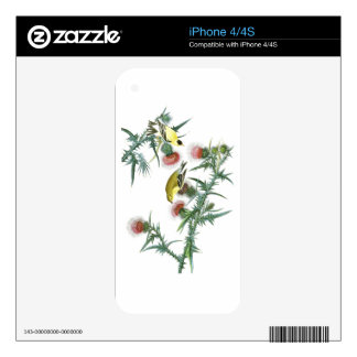 American Goldfinch John Audubon Birds of America iPhone 4S Skin