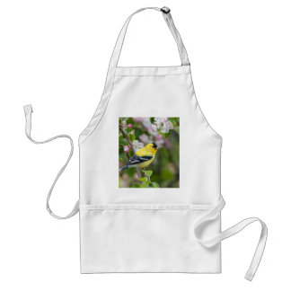 American Goldfinch with spring apple blossoms Aprons
