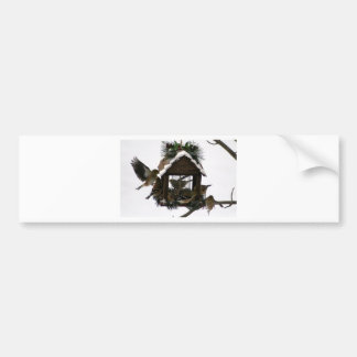 American Goldfinches Bumper Sticker