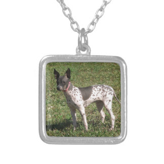 American Hairless Terrier Dog Silver Plated Necklace