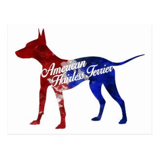 American Hairless Terrier Postcards