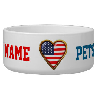 American Heart Bowl