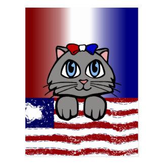 American Heartland Kitty Postcard