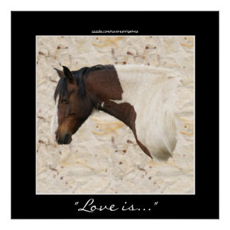 American Indian Painted Pony Horse-lover Print
