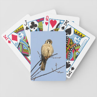 American Kestrel Bicycle Playing Cards