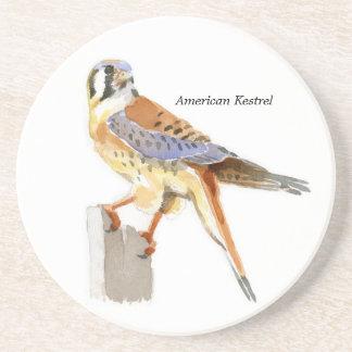 American Kestrel coaster