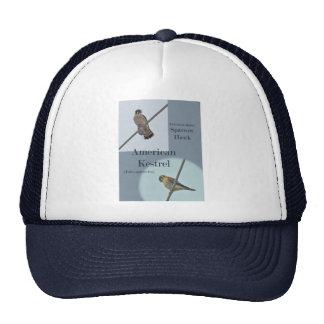 American Kestrel (Falco sparverius) Items Hat