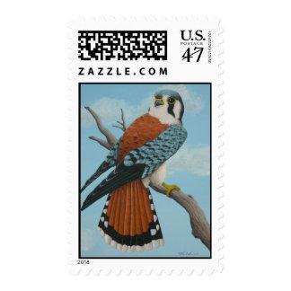 American Kestrel postage