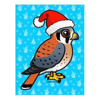 American Kestrel Santa Postcard