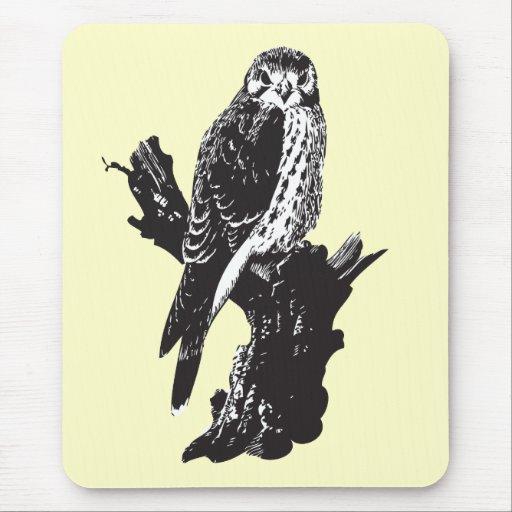 American Kestrel Sketch Mousepads