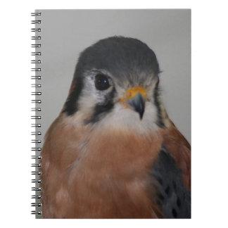 American Kestrel Spiral Photo Notebook