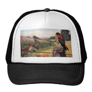 American Kestrels on a Barbed Wire Fence Trucker Hat