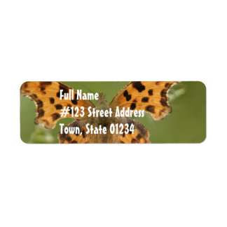 American Lady Butterfly Mailing Label Return Address Label
