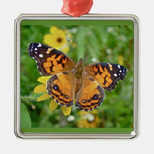 American Lady Butterfly - Vanessa virginiensis Square Metal Christmas Ornament