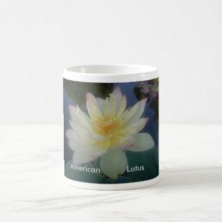 American Lotus picture Coffee Mug