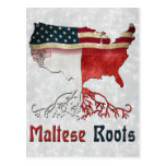 American Maltese Roots Postcard