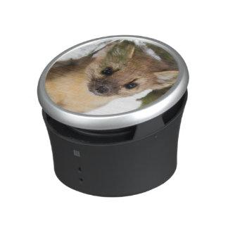 American Marten Or Pine Marten Bluetooth Speaker