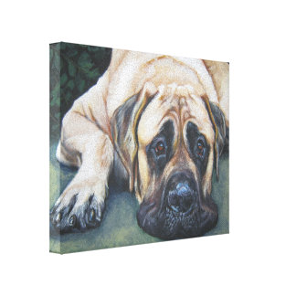 American Mastiff Painting on Wrapped Canvas