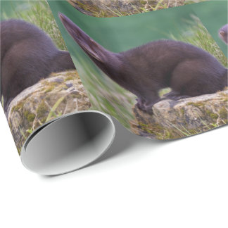 American Mink Wrapping Paper