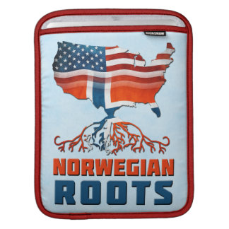 American Norwegian Roots iPad Case