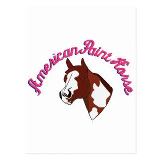 American Paint Horse Postcard