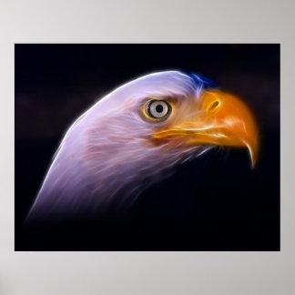 American Patriotic Bald Eagle, National Symbol Poster