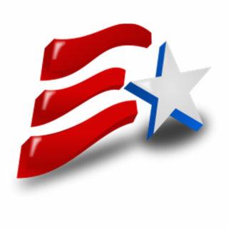American Patriotic Symbol Photo Sculpture