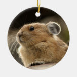 American Pika Double-Sided Ceramic Round Christmas Ornament