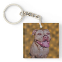 American Pink Nose Pit Bull, Keychain
