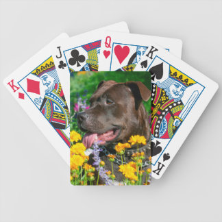 American Pit Bull in field of flowers Bicycle Playing Cards