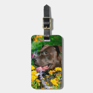 American Pit Bull in field of flowers Tag For Luggage